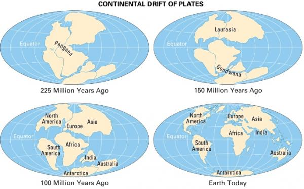 7 Continents of the World, Know About the Continents of the World Map