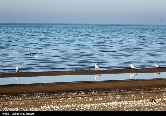Miankaleh: A Heavenly Sanctuary in Iran