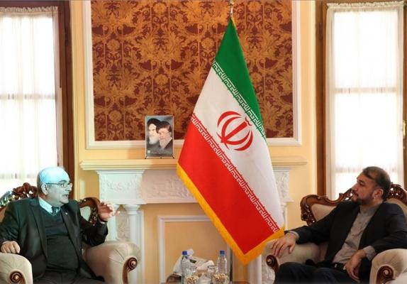 Russian Envoy Urges Closer Ties with Iran