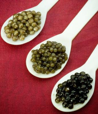 How to Judge the New Generation of Caviar