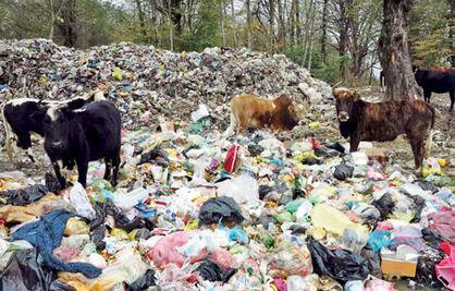 دفن طبیعت زیر زبالهها