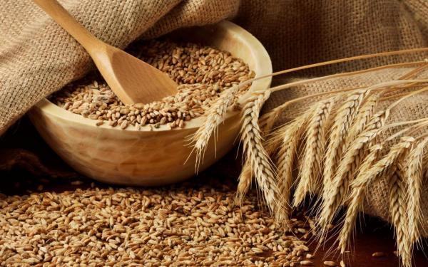کاهش واردات گندم به آذربایجان