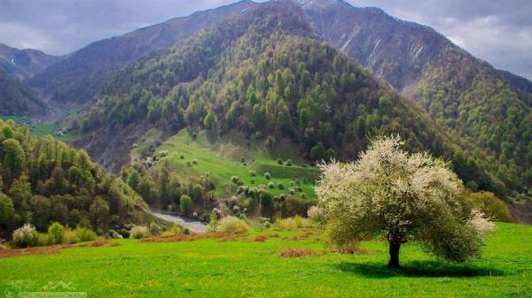 Azerbaijan's national parks cause great interest among tourists