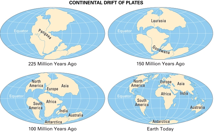 7 Continents of the World Know About the Continents of the World Map